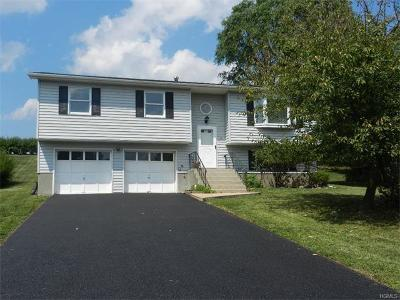New Windsor Single Family Home For Sale: 58 Guernsey Drive