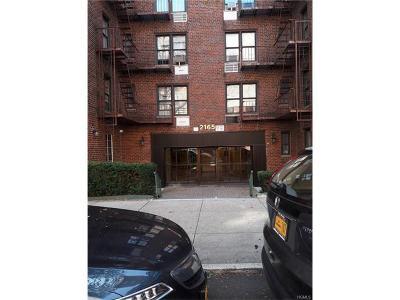 Co-Operative For Sale: 2165 Matthews Avenue #4F