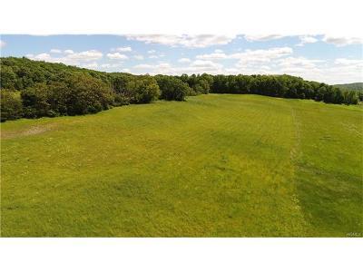 Millbrook Residential Lots & Land For Sale: 133 Woodstock Road