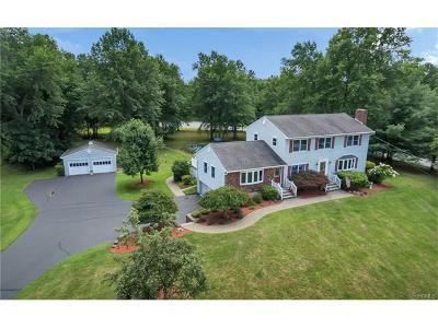 Goshen Single Family Home For Sale: 93 Hill Road
