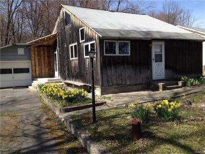 Pine Bush Single Family Home For Sale: 1213 Burlingham Road