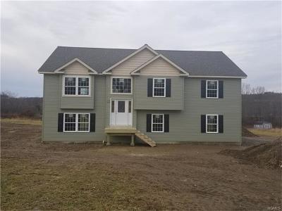 Goshen Single Family Home For Sale: 144 Old Chester Road