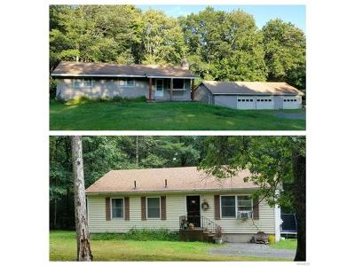 Barryville Single Family Home For Sale: 282 Van Tuyl Road