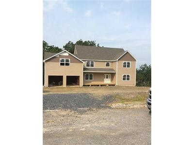 Goshen Single Family Home For Sale: 20 Danielle Drive