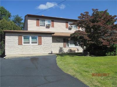 Single Family Home For Sale: 143 Bogert Avenue