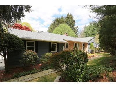 Westchester County Single Family Home For Sale: 376 Rte 22