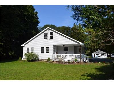 Dover Plains Single Family Home For Sale: 95 Tinker Town Road