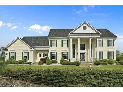 Monroe Single Family Home For Sale: 321 Museum Village Road
