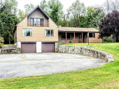 Brewster Single Family Home For Sale: 103 Starr Ridge Road