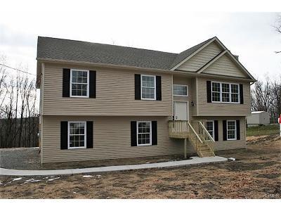 Goshen Single Family Home For Sale: 16 Vetri Road