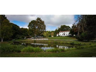 Poughkeepsie Single Family Home For Sale: 262 Cream Street