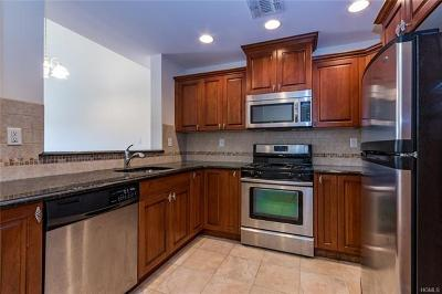 Rockland County Condo/Townhouse For Sale: 3 Cross Street #408