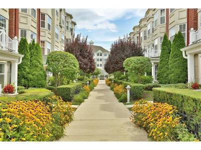 Condo/Townhouse For Sale: 2 Bridge Lane