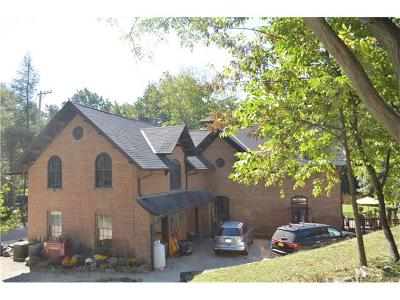 Garrison Single Family Home For Sale: 65 Indian Brook Road