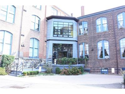 New Rochelle Condo/Townhouse For Sale: 52 Webster Avenue #20