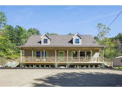 New Windsor Single Family Home For Sale: 776 Jackson Avenue