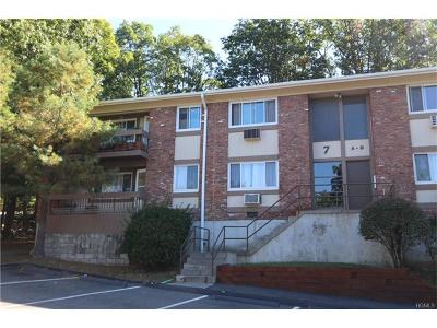 Peekskill Condo/Townhouse For Sale: 7 North James Street #H