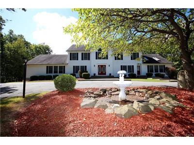 Monroe Single Family Home For Sale: 162 Conklin Road