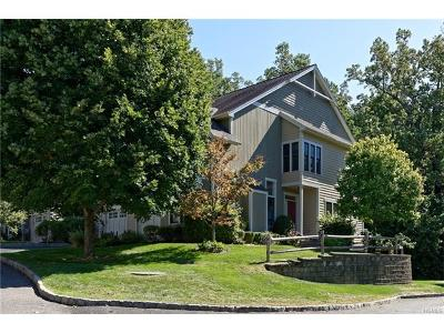 Dobbs Ferry Single Family Home For Sale: 27 Landing Drive