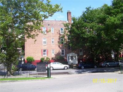 Yonkers Condo/Townhouse For Sale: 144 Ravine Avenue #1A