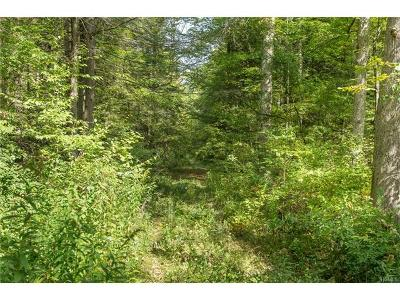 Dover Plains Residential Lots & Land For Sale: 110 Cart Road