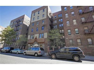 Bronx Co-Operative For Sale: 2922 Barnes Avenue #6F