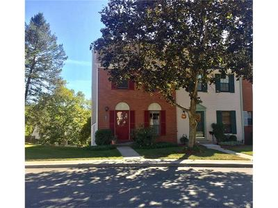 Peekskill Condo/Townhouse For Sale: 13 Winterberry Court