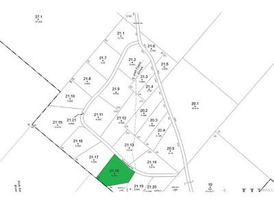 Residential Lots & Land For Sale: 21.18 Okeechobee Road