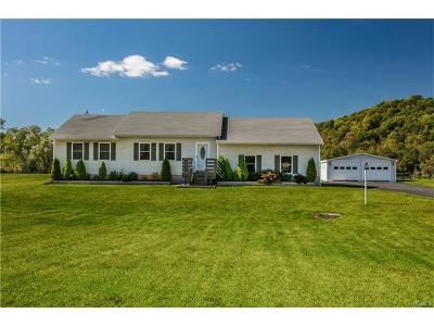 Pine Plains Single Family Home For Sale: 7971 Route 82