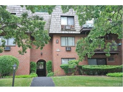 Ossining Condo/Townhouse For Sale: 2 Briarcliff Drive #14