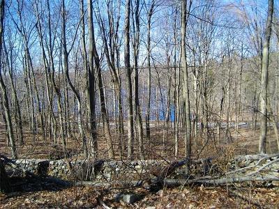 Putnam County Residential Lots & Land For Sale: 36 Reservoir Road