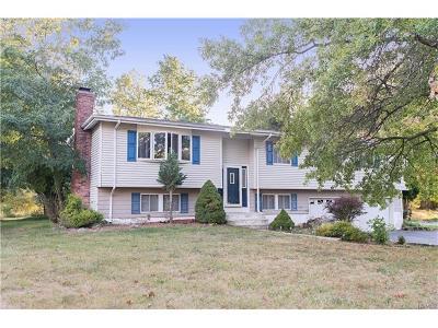 Goshen Single Family Home For Sale: 21 Larchwood Drive