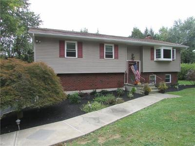 Fishkill Single Family Home For Sale: 32 Westview Drive