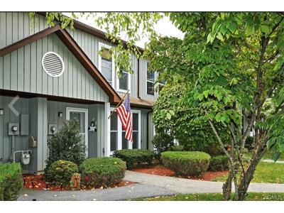 Westchester County Condo/Townhouse For Sale: 58 Hemlock Circle