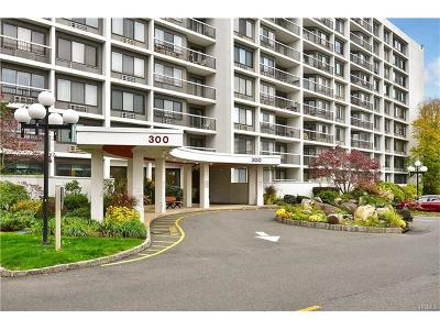 Hartsdale Condo/Townhouse For Sale: 300 High Point Drive #401