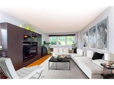 Westchester County Condo/Townhouse For Sale: 54 North Ridge Street #1A