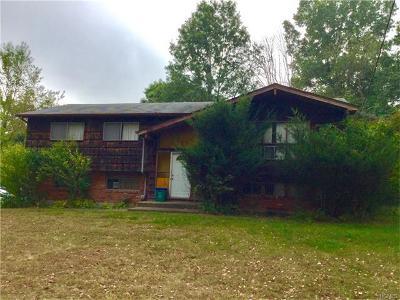 Single Family Home For Sale: 60 Grandview Avenue