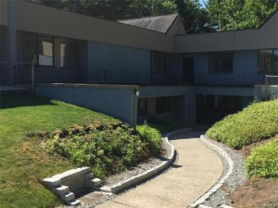 New City Commercial For Sale: 100 Phillips Hill Road