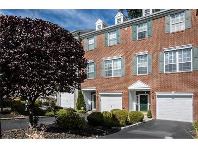 Rockland County Condo/Townhouse For Sale: 93 Meadow Lane