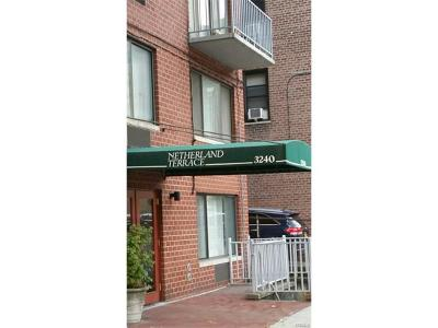 Bronx Condo/Townhouse For Sale: 3240 Netherland Avenue #6B