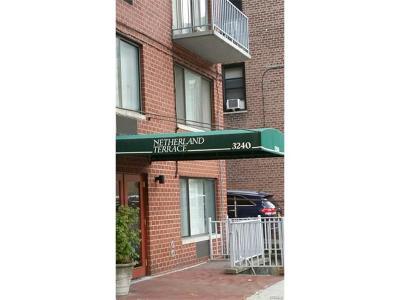 Bronx NY Condo/Townhouse For Sale: $400,000