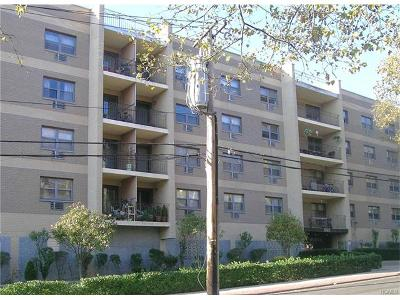 Westchester County Rental For Rent: 505 White Plains Road #3E