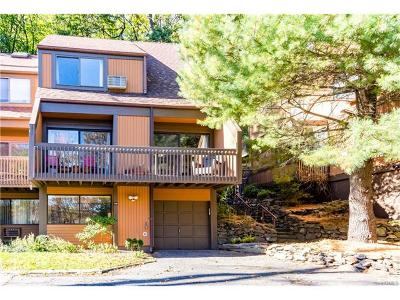Dobbs Ferry Single Family Home For Sale: 136 Ogden Avenue