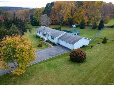 Dover Plains Single Family Home For Sale: 93 Woodside Drive