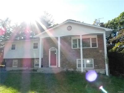 Nyack Single Family Home For Sale: 1 North Delaware Drive