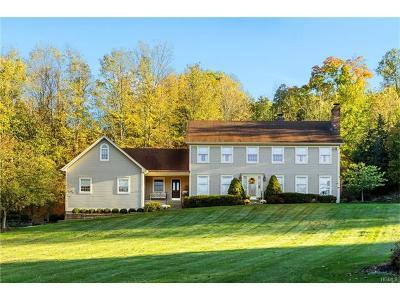 Washingtonville Single Family Home For Sale: 9 Taramar Lane