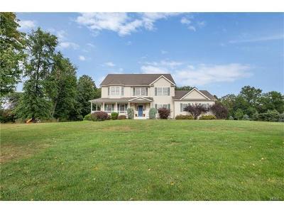 Goshen Single Family Home For Sale: 7 Danielle Drive