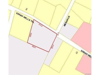 Washingtonville Residential Lots & Land For Sale: 35 Sarah Wells Trail