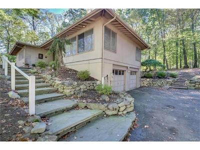 Rockland County Single Family Home For Sale: 17 Chestnut Drive