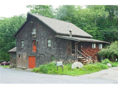 Middletown Single Family Home For Sale: 11 Millsburg Road